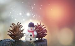 On the 19th day of December... (KissThePixel) Tags: snowman pinecone pine creativephotography creativecomposition tabletopphotography bokeh bokehlicious tree garden sunlight sun sunrise longacremanor kissthepixel sparkle snow imagination nikon nikond750 70200mm sigma70200mm sigmamacro f28 christmas christmasfun december