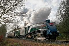 60009: Back On Track (Gerald Nicholl) Tags: a4 unionofsouthafrica 60009 9 lner strongstry bury ramsbottom elr eastlancashire express loco steam egine locomotive train santaspecial rawtenstall lancashire eastlancs