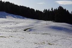 Nordic skiing tracks @ Secteur du Berger @ Semnoz @ Annecy