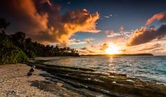 Enjoying sunrise with local amigo (holecem) Tags: huahine frenchpolynesia polynesia dog beach sunrise paradise landscape ocean travel backpacking sand island