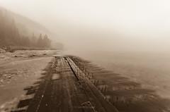 Bed of Nails (Aaron Springer) Tags: michigan northernmichigan lakemichigan thegreatlakes shoreline lakeshore shipwreck fog monochrome sepia outdoor