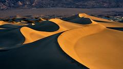 Natural CURVES - Mesquite Flat Sand Dunes - Death Valley, California (W_von_S) Tags: mesquiteflatsanddunes sanddünen sanddunes deathvalley california kalifornien usa us america amerika vereinigtestaaten unitedstates nationalpark southwest südwesten wüste desert sunrise sonnenaufgang light shadows licht schatten curves kurven sensual sensualnature sinnlich natur nature landschaft landscape paysage paesaggio panorama paisaje sony sonyilce7rm2 wvons werner outdoor autumn herbst fall november 2019