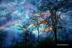 BLUE WINTER (Viktor Manuel 990.) Tags: winter invierno trees árboles blue azul digitalartandpainting querétaro méxico victormanuelgómezg