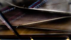 Jingle Bells, Wish You a Merry Christmas ..... (vale0065) Tags: piano muziek music instrument steinway steinwayandsons interieur binnekant interiour interior inside string snaar snaren slovenia slovenië piran pirran