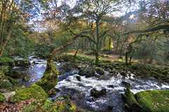 The River Plym tumbles off Dartmoor (Baz Richardson) Tags: devon dartmoor riverplym dewerstonewood woods nationaltrust goodameavyestate rapids rivers sssi