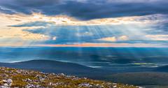 View from Taivaskero fell in Lapland (ikkasj) Tags: lapland finland taivaskero muonio summer 24hsunlight nature felllapland sunshine sun nordic