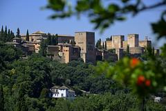 Granada. La Alhambra desde el camino del Sacromonte (Alfonso Suárez) Tags: españa verde azul spain camino andalucia bosque cielo alhambra granada sacromonte alfonsosuárezlagares alfonsosuárez desenfoque rama palacio