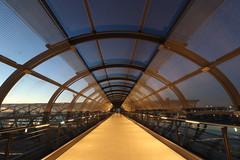 Skywalk (Elbmaedchen) Tags: bahnhof elbbrücken skywalk blauestunde architektur hamburg db tube röhre verbindung futuristisch