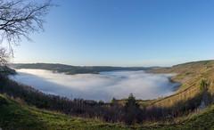 Fog on the Moselle river (Gerben321) Tags: kröv rhinelandpalatinate germany