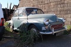 1965 Morris Minor (Richard81MY) Tags: morris minor british 1960s 1965 abandoned car