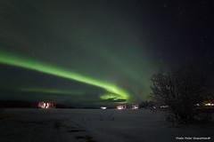 Northern light! (petergranström) Tags: approved northern lights norrsken snow snö lake sjö houses hus stugor night natt stars stjärnor trees träd bush buske