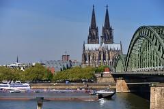 Liquid chemical (tanker) barges on the Rhine, moving upstream through Cologne, Germany. (edk7) Tags: nikond610 nikonafnikkor28105mm13545d edk7 2015 germany deutschland northrhinewestphalia nordrheinwestfalen cologne köln stadtköln altstadtköln skyline colognecathedral kölnerdom hohedomkirchestpetrus 12481880 romancatholic church gothic rhine rhein river hohenzollernbrücke hohenzollernbridge 190711 194859 railpedestrianbridge railroad rwy rr industrial architecture building oldstructure unescoworldheritagesite city urban cityscape girder ship boat mechanical machine embankment liquidchemicaltankerbarge