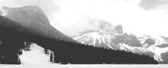 Avalanche .... (Mr. Happy Face - Peace :)) Tags: yoho nationalpark canada britishcolumbia nature trees lake hiking art2019 scenery landscape black white mountains emeraldlake bw