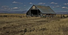 Barns of the High Sierra (The VIKINGS are Coming!) Tags: california barns rustic wood ranch cattle reclaimed mountain valley scenic farm sierras tahoe