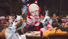 💬 ᶜᵃᵗˢ ᶜᵃᵗˢ ᶜᵃᵗˢ ᵃᶰᵈ ᵐᵒʳᵉ ᶜᵃᵗˢ. (ℒزdsα) Tags: noir midna theepiphany love loki genus eudorabeauty aviglam marukado cat kitty cats gacha christmas blonde girl cute pet itdoll doll woman lotd fashion game gamer gamergirl gamedoll avatar sl secondlife slavatar slfashion free freebie mesh pixel virtual virtualworld beauty beautiful photo photograph snapshot clothing clothes picture blog blogger slblogger secondlifeblogger moda event evento roupas gratuito garota blogueira loja sponsor