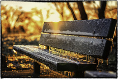 Frozen (cesar.toribio1218) Tags: parkbenches nycparks nycstreet winter frozen ice sunrise beautifulview abeautifulmoment morning warmcolors coldday
