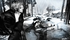 Cold (tralala.loordes) Tags: serenefootman coco tralalaloordes tralala tra flickrblogging flickrart fashion fantasy secondlife sl slfashionblogging slblogging winter water ice virtualphotography virtualreality vr avatar photoopsim photoshop