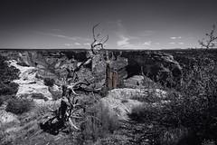 Canyon de Chelly National Monument - Spider Rock - Arizona - USA (R.Smrekar) Tags: usa 2019 arizona landscape nikon canyon blackwhitecolor z7 smrekar monument 000500