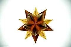 Origami Bascetta Star (Paolo Bascetta) (De Rode Olifant) Tags: origami 3d marjansmeijsters paolobascetta origamistar paper papiroflexia modular diagrams tutorial bascettastar origamibascettastar