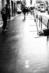 L'arbre de Noël. (LACPIXEL) Tags: rue street calle versailles yvelines france arbredenoël christmastree árboldenavidad gens gente people personnes trottoir acera pavement sidewalk sony noiretblanc blancoynegro blackwhite flickr lacpixel
