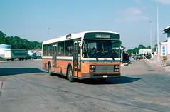 4 462 60 (brossel 8260) Tags: belgique bus sncv tec namur luxembourg