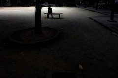 DSC03558A  Capricious image (soyokazeojisan) Tags: japan osaka city street people park tree light shadow leaves digital sony rx100ⅵ 2019