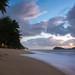 Sunrise  - Palm Cove