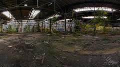 Stetiges Wachstum (Panasonikon) Tags: panasonikon panasonic dmcg81 walimex75 fisheye panorama fabrik lostplaces verfall industrie industry ruine niedergang mft