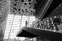 Harpa (erichudson78) Tags: islande iceland reykjavik harpa silhouette architecture nb bw noiretblanc blackandwhite canoneos6d island