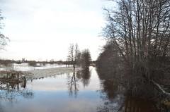 Tierp 19/12 2019. (johnerlandaxelsson@gmail.com) Tags: tierp uppland sverige vinter vatten natur landskap johnaxelsson