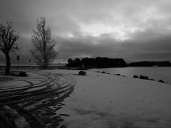 Pulkkilan harju (www.ilkkajukarainen.fi) Tags: pulkkilan harju päijänne happy life line asikkala winter talvi suomi finland finlande eu europa scandinavia lake järvi luonto nature three puu jäljet auton photography fotography lumi snow blackandwhite mustavalmoinen monochrome