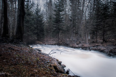 River (mabuli90) Tags: finland forest water river creek longexposure nature landscape tree rock