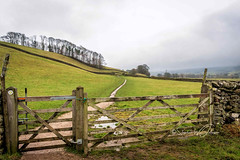 SJ2_0157 - Hardraw meadows (SWJuk) Tags: swjuk uk unitedkingdom gb britain england yorkshire northyorkshire yorkshiredales dales wensleydale hawes hardraw meadows fields farmland path footpath flaggedpath gate trees cloud lowcloud mist landscape countryside 2019 nov2019 winter holidays nikon d7200 nikond7200 wideangle rawnef lightroomclassiccc nikonafsdx1755mmf28gifed