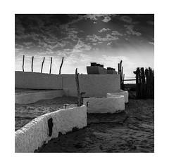 jebel ali (young00) Tags: hasselblad500cm sea medium film epson dubai landscapes nopeople cloud 120mm sands ilftecddx ilford
