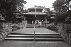 Nepalese Pagoda (goodfella2459) Tags: nikonf4 afnikkor24mmf28dlens kodaktrix400 35mm blackandwhite film analog brisbane queensland australia nepalesepagoda building trees people bwfp