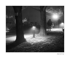 Approaching (agianelo) Tags: sidewalk path night light fog monochrome bw bn blackandwhite