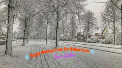 MERRY CHRISTMAS * BON NADAL * FELIZ NAVIDAD * PRETTIGE KERSTDAGEN (HereIsTom) Tags: webshots travel europe netherlands holland dutch view nederland views you nature sun tourists cycle vakantie fietsvakantie cycling holiday bike bicycle fietsen plus apple ios camera iphone 8 winter december 2020 2017 snow holidays trees odijk sneeuw kerst feestdagen 2019 10 street friends feliz christmas season navidad joyeuses fétes happy xmas noel fijne year new seasons greetings