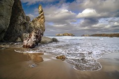 Driftwood (Gary Grossman) Tags: driftwood beach coast shore sand waves reflections outcroppings pacific nature landscape seascape ocean oregon bandon clouds garygrossman garygrossmanphotography pacificnorthwest scenic beautyinnature bandonbythesea outdoors nopeople landscapephotography