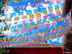 ... (Jean S..) Tags: flags tree sky clouds building yellow pink blue orange store boutique