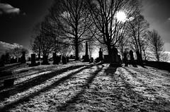 Old Man (drei88) Tags: solstice winter cold desolate metaphor boundary edge energy atmosphere diminution noir shadow light life death verge fleeting grave stark grim hope cycles searching forlorn witness