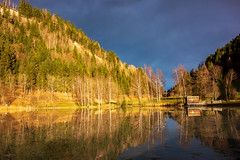 contrasts (bernd.kranabetter) Tags: goldegg böndelsee nature clouds trees water contrasts ice cold