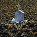 CHILE - Atacama Desert - Road to Colchane (1045)