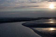 Baie du Mont Saint Michel (Michel Couprie) Tags: europe france normandy normandie sea seascape manche montsaintmichel water bay composition sunrise sun reflection reflect reflet canon eos couprie