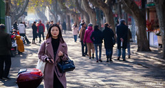 The modern Chinese woman (gunman47) Tags: jiangsu december asia east street people city beauty lady 24105 modern shanghai chinese peoples confident suzhou woman photography asian republic prc 2019 24105mm china peoplesrepublicofchina 中国 苏州 beautiful mainland
