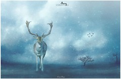 Reindeer are the very twinkling in the eye of the holiday that we call Christmas.  ~Vector~ (Lorrainemorris) Tags: christmas blue snow nature birds zeiss surrealism sony fineart creative deer dreams magical artisticexpression creativephotography sony7rm2 winter sky clouds photoshop soft ireland dublin wildlife phoenixpark