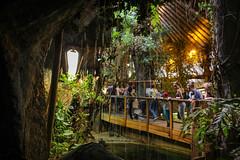 Zoo cave (JaaniicB) Tags: canon 1200d eos riga zoo waterfall people sigma 1750mm f28