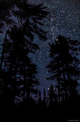 Quiet Solitude (M@rtha Decker) Tags: stars star starry night sky dark astronomy oldgrowth old growth pines grand portage state forest hovland minnesota minn mn arrowhead trail outdoors nature outside north woods northwoods backwoods remote rustic camp campsite pentax k30 dslr tamron 18200mm zoom lens marthadecker onlyinmn upnorth justpentax