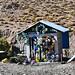 CHILE - Atacama Desert - Road to Colchane (1092)