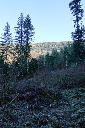 Hike to Montagne de Chevran @ Cluses