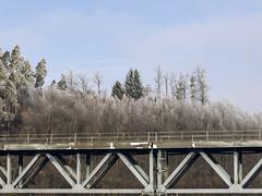 White frost - railroad bridge (verblickt) Tags: austria waldviertel winter winterscene loweraustria forest raureif outside